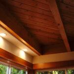 ADU ceiling light detail